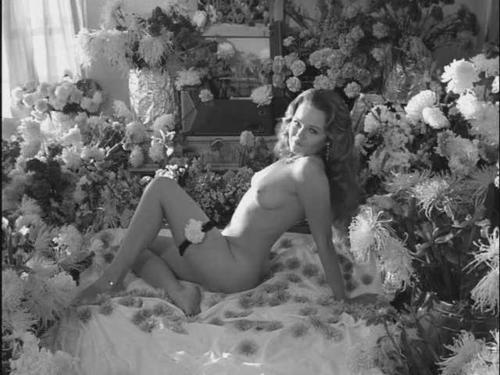 Valerie perrine topless pics images 61