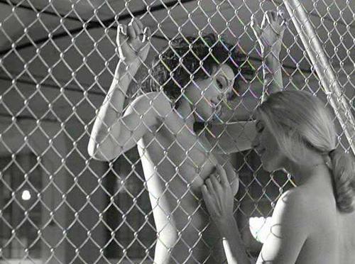 Angelina jolie gia sex scenes