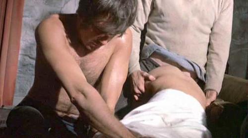 Susan george topless